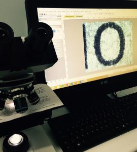 Scientific Equipment – Veterinary Microscopes