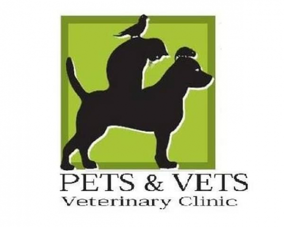 Contract for services – Pets and Vets